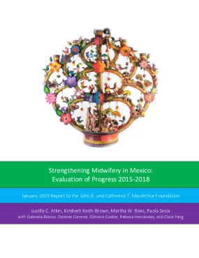 Strengthening Midwifery in Mexico: Evaluation of Progress 2015-2018